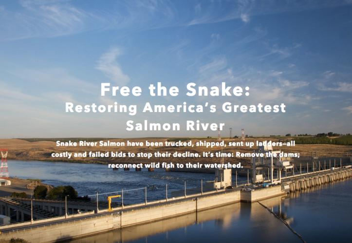 snake river dam
