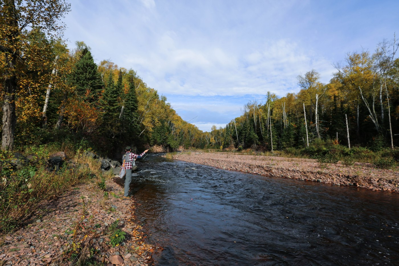 Fly fishing in minnesota birch flannel for Trout fishing mn